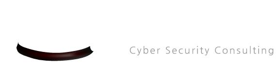 Seguro - Cyber Security Consulting for the North East